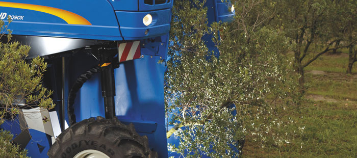braud-9090x-olive-harvester-picking-head-07.jpg