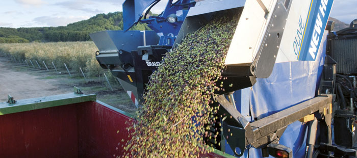 braud-9090x-olive-harvester-picking-head-05.jpg